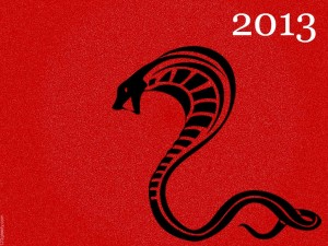 happy_chinese_new_year_2013_16