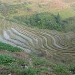 Photo 959 - 2013 China